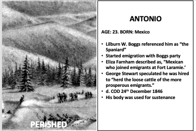 Read more about the article Antonio