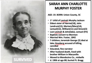 Read more about the article Sarah Ann Charlotte Murphy Foster
